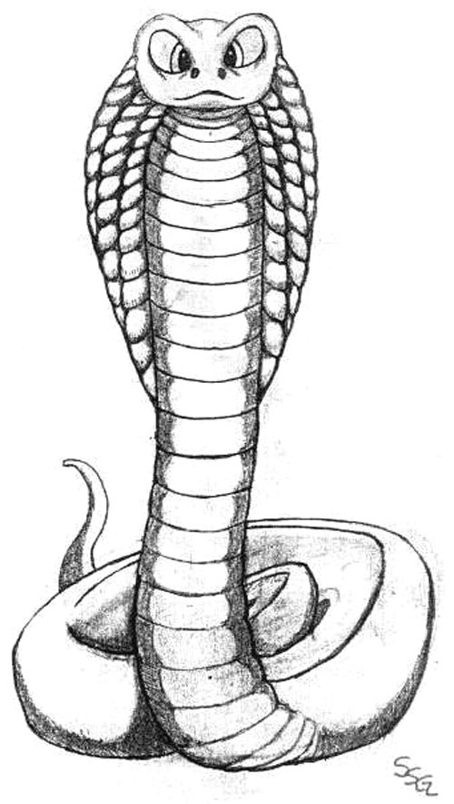 рисунок кобры тату